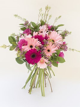 Bouquets: Mixed Gerbera Bunch
