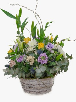 Arrangements: Midsummer Night