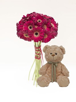 Bouquets: Red Gerbera Bouquet with Teddy